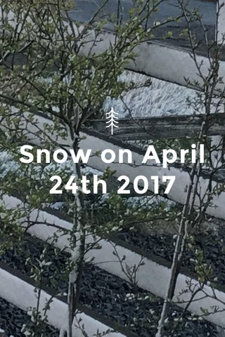 Snow on April 24th 2017