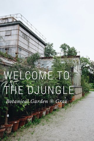 WELCOME TO THE DJUNGLE Botanical Garden ❁ Graz