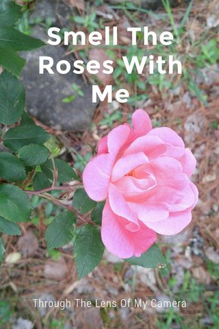 Smell The Roses With Me Through The Lens Of My Camera