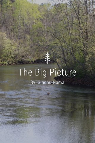 The Big Picture By: Sindhu Nama