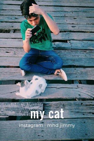my cat instagram : mhd.jimmy