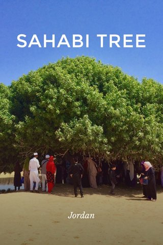 SAHABI TREE Jordan