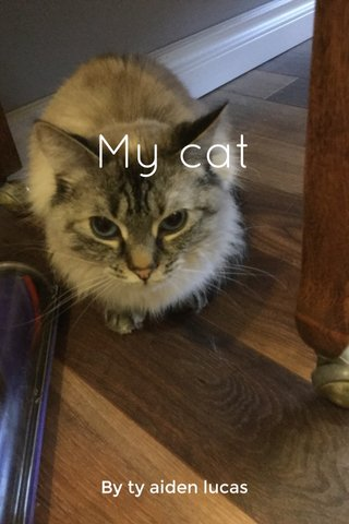 My cat By ty aiden lucas