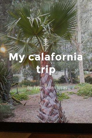 My calafornia trip By Tyler aiden lucas