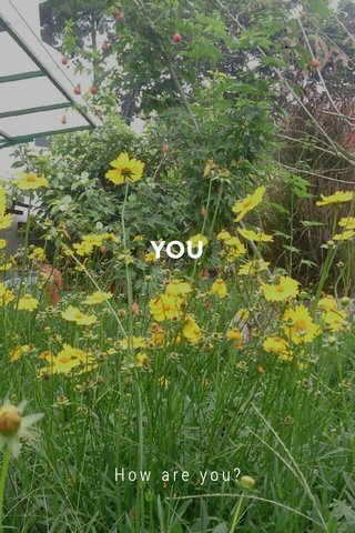 YOU How are you?
