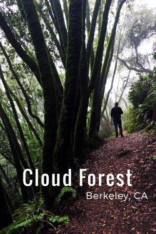 Cloud Forest Berkeley, CA