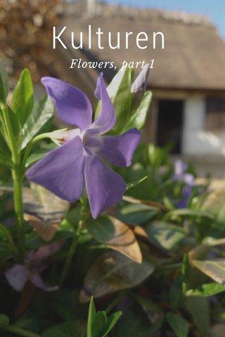 Kulturen Flowers, part 1