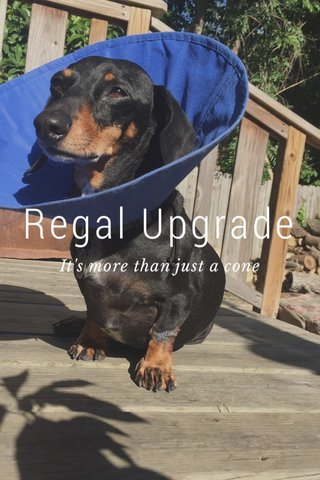 Regal Upgrade It's more than just a cone