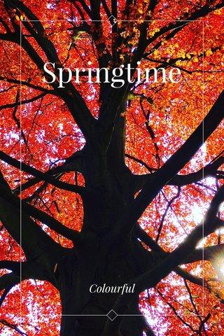 Springtime Colourful