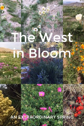 The West in Bloom AN EXTRAORDINARY SPRING