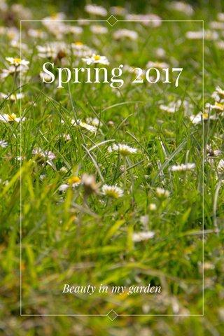 Spring 2017 Beauty in my garden