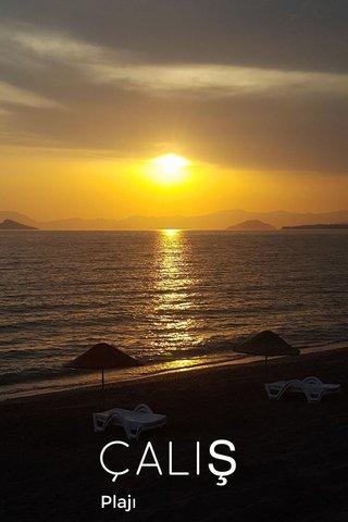 ÇALIŞ Plajı
