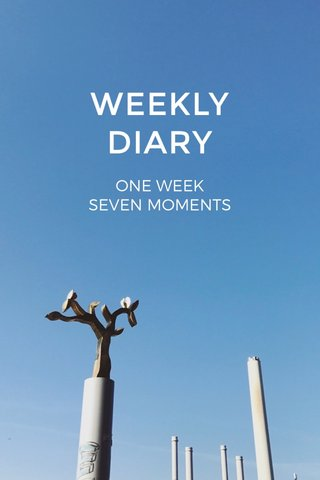 WEEKLY DIARY ONE WEEK SEVEN MOMENTS