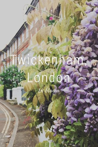 Twickenham, London In bloom