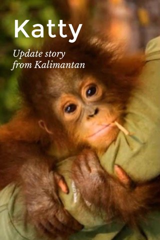 Katty Update story from Kalimantan