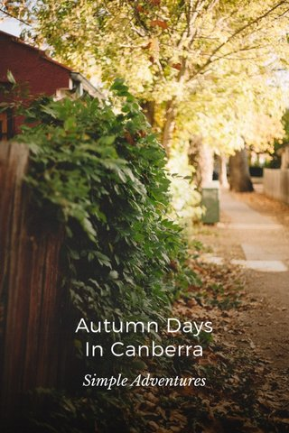 Autumn Days In Canberra Simple Adventures