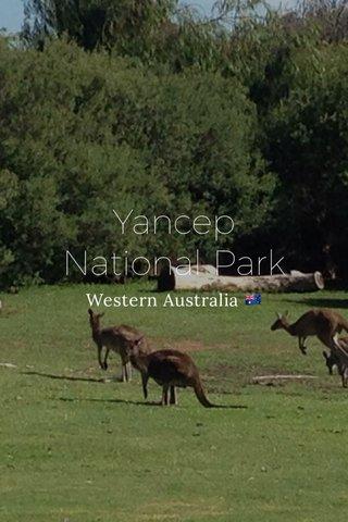 Yancep National Park Western Australia 🇦🇺