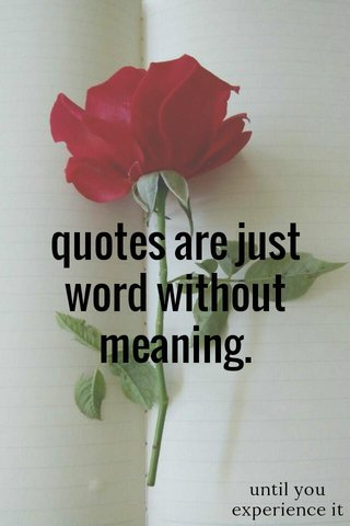 quotes are just word without meaning. until you experience it