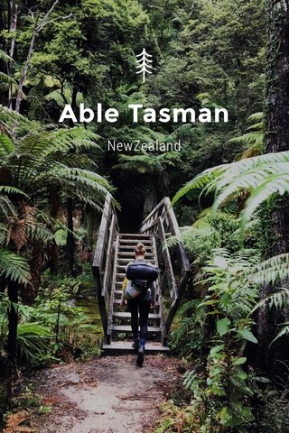 Able Tasman NewZealand