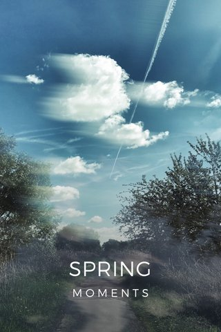 SPRING MOMENTS