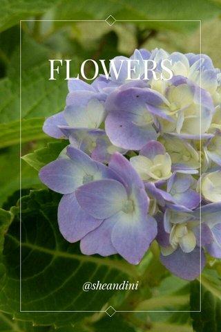 FLOWERS @sheandini