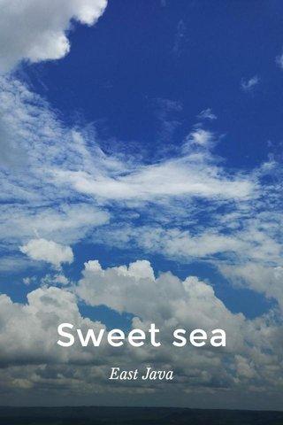 Sweet sea East Java