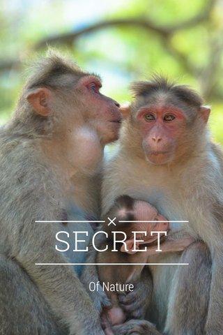 SECRET Of Nature