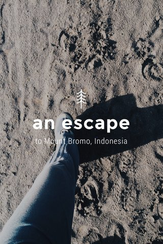 an escape to Mount Bromo, Indonesia