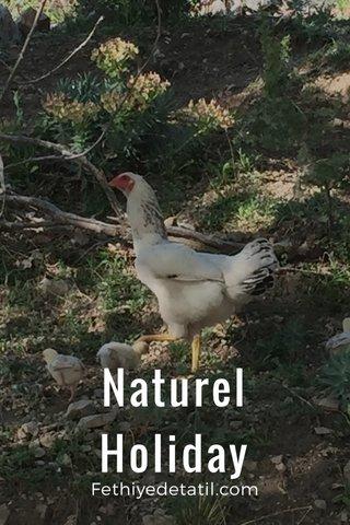 Naturel Holiday Fethiyedetatil.com