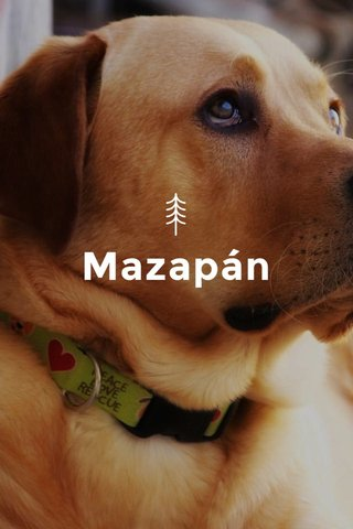 Mazapán
