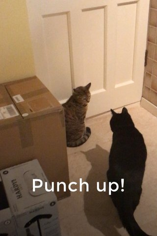 Punch up!