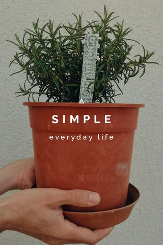 SIMPLE everyday life