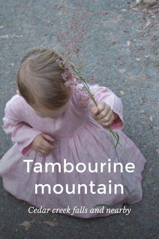 Tambourine mountain Cedar creek falls and nearby