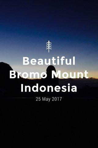 Beautiful Bromo Mount Indonesia 25 May 2017