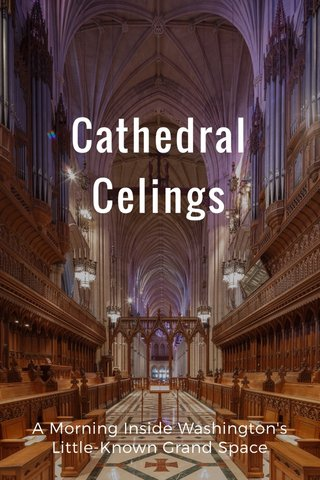 Cathedral Celings A Morning Inside Washington's Little-Known Grand Space