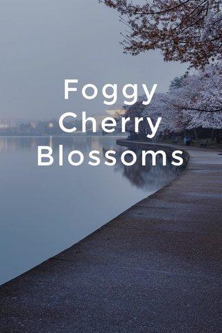 Foggy Cherry Blossoms