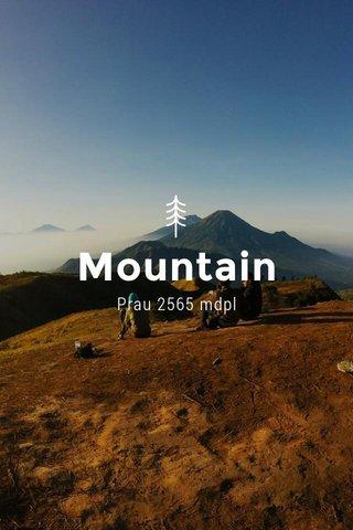 Mountain Prau 2565 mdpl