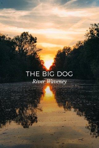 THE BIG DOG River Waveney