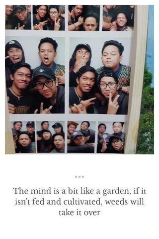 The mind is a bit like a garden, if it isn't fed and cultivated, weeds will take it over