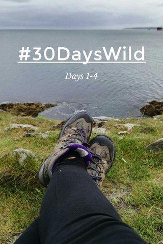 #30DaysWild Days 1-4