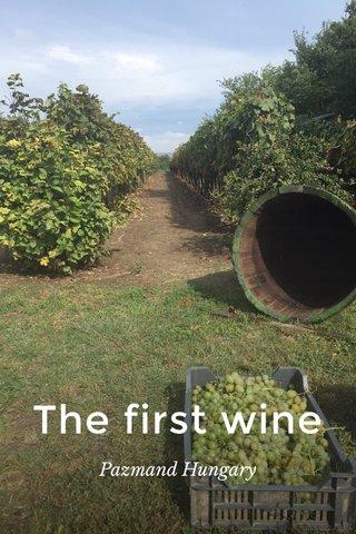 The first wine Pazmand Hungary