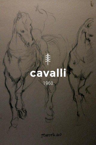 cavalli 1960
