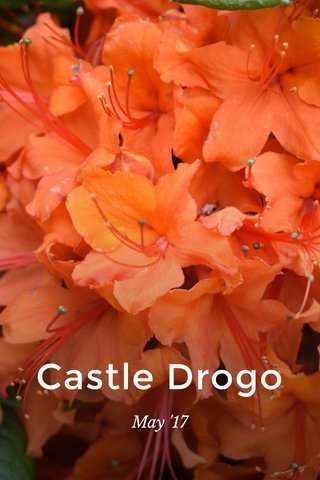 Castle Drogo May '17