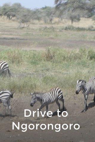 Drive to Ngorongoro