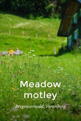 Meadow motley Bregenzerwald, Vorarlberg