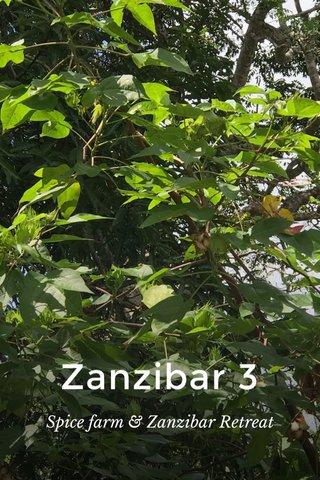 Zanzibar 3 Spice farm & Zanzibar Retreat