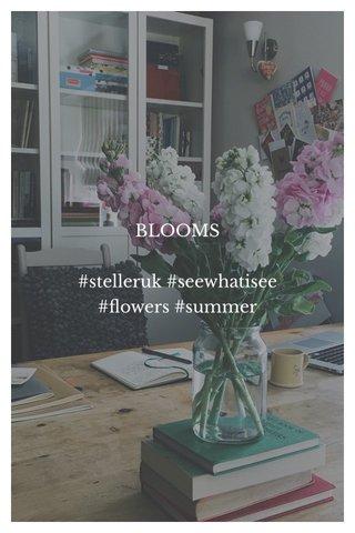BLOOMS #stelleruk #seewhatisee #flowers #summer