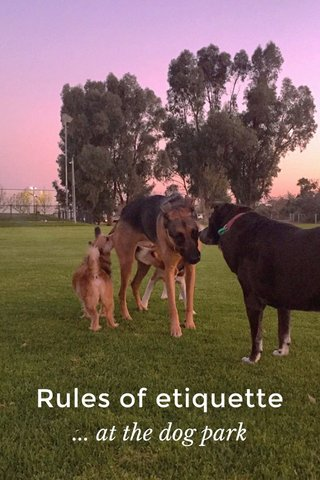 Rules of etiquette ... at the dog park