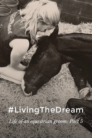 #LivingTheDream Life of an equestrian groom: Part 5