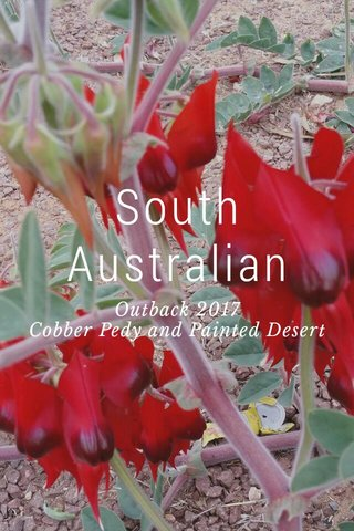 South Australian Outback 2017 Cobber Pedy and Painted Desert